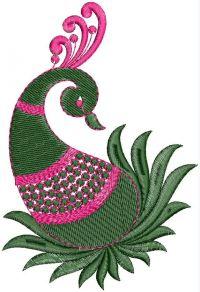 peacock mango butta