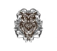 Amazing Owl  Creative Figure Embroidery Design