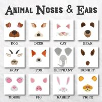 12 Animal Noses And Ears Embroidery Design Pack