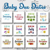 12 Baby Due Dates Embroidery Design Pack