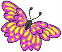 butterfly embroidary design