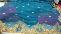 Daymond Test C Pallu saree embroidery design