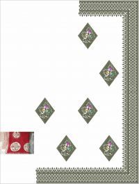 tatami stich  c pallu saree embroidery design