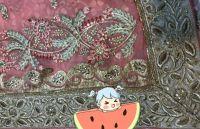 Penal Concept Saree embroidery design