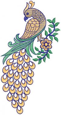 Creative Peacock  Embroidery Design