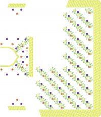 C PALLU WITH BLUSE SAREE EMBROIDERY DESIGN