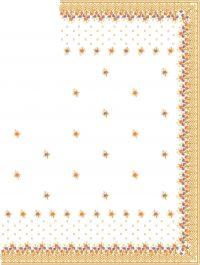 dhaga test c pallu design
